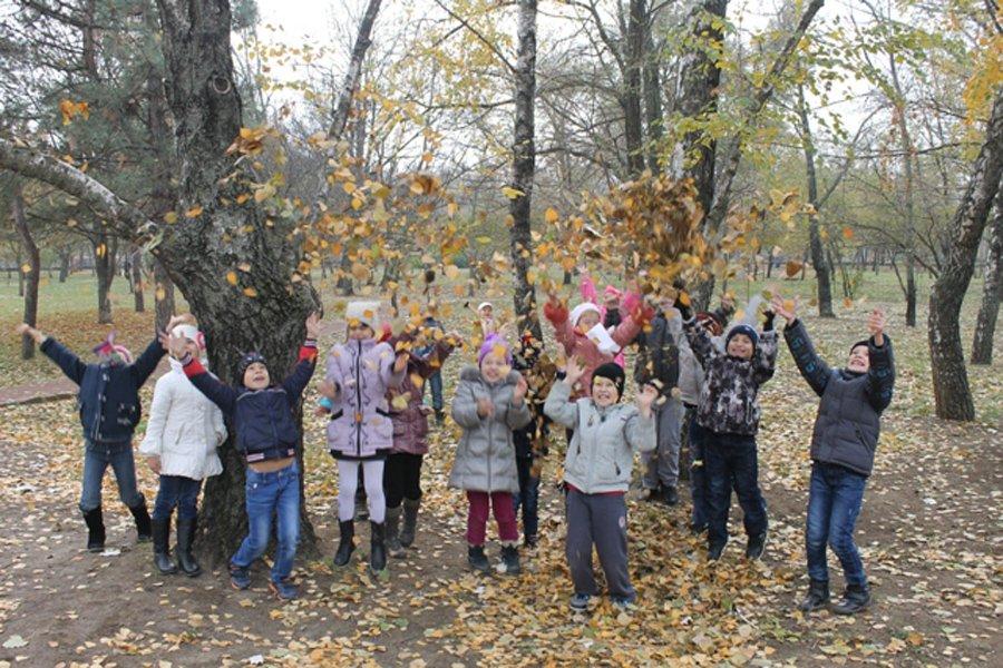 На осенних каникулах детей Волгодонска отправят в школу
