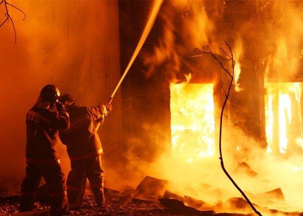 В Волгодонске сгорели бесхозные здания и камыш