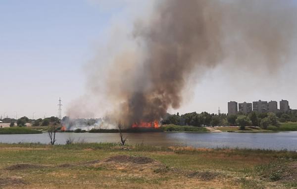 В Волгодонске вспыхнул ландшафтный пожар в районе Путепровода
